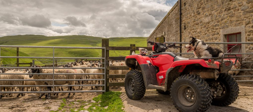GIA Insurance Brokers - How to manage the risks of machinery in your rural workplace thumbnail